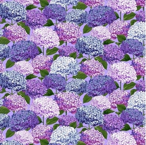 Dragonfly Garden Hydrangea Blossoms Purple Periwinkle Cotton Fabric