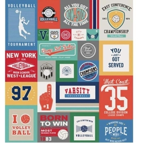 Varsity Volleyball Championship 64x56 Quilt Top Cotton Fabric Panel