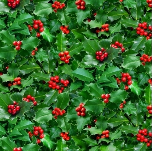 Landscape Medley Holly with Berries Holiday Greens Cotton Fabric