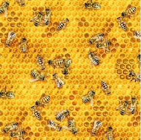 Bees and Flowers Active Honey Bees on Honeycomb Cotton Fabric