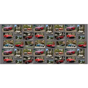 MG Collection Classic British Motor Car Patchwork 24x44 Fabric Panel