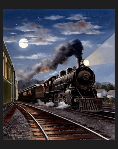 South Carolina Locomotive Night Train Large Cotton Fabric Panel