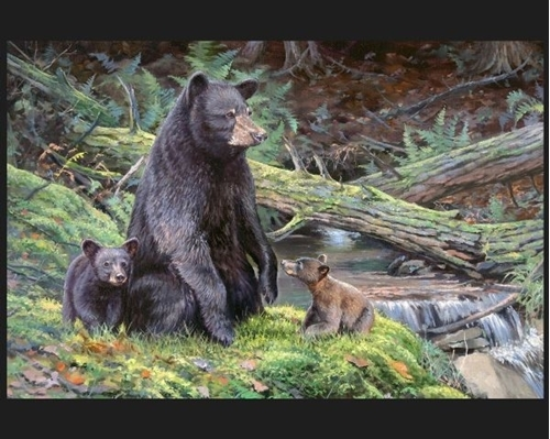Bear Necessities Mother and Cubs Jack Paluh Large Cotton Fabric Panel