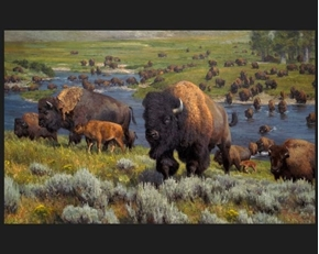 An American Migration Buffalo Herd Kyle Sims Large Cotton Fabric Panel