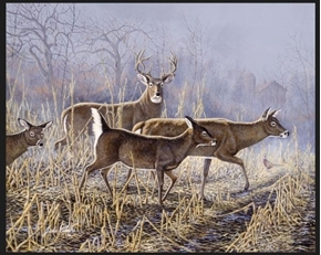 Cornfield Crossing Deer Artwork By Jack Paluh Large Cotton Fabric Panel
