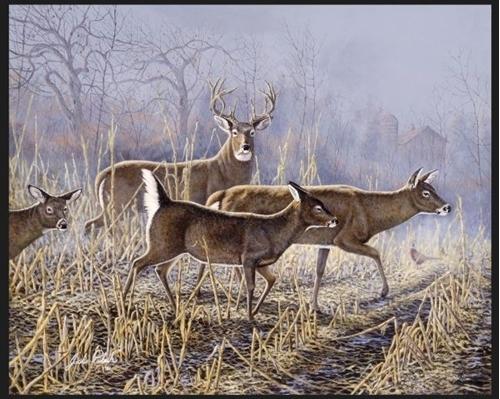 Cornfield Crossing Deer Artwork By Jack Paluh Large Cotton Fabric Panel