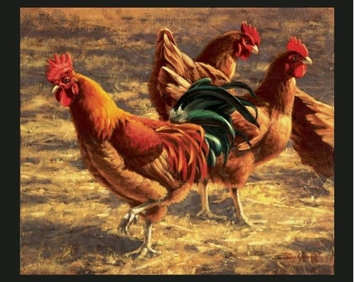 Yard Birds Rooster Chicken Artwork Paco Young Large Cotton Fabric Panel