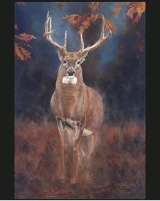 Close Encounter Deer Buck Autumn Woods Jack Paluh Cotton Fabric Panel
