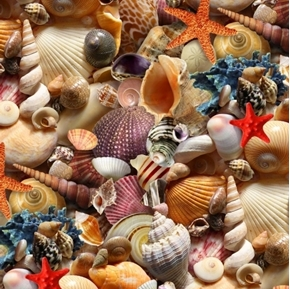 Landscape Medley Shells Packed Beach Shell Collection Cotton Fabric