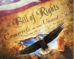 Best of America Bill of Rights Patriotic Congress Cotton Fabric Panel