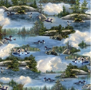 Loons Scenic Loon Family Chicks Water Birds Hautman Cotton Fabric