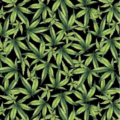 Marijuana Plant Cannabis Leaves Green Leaf on Black Cotton Fabric