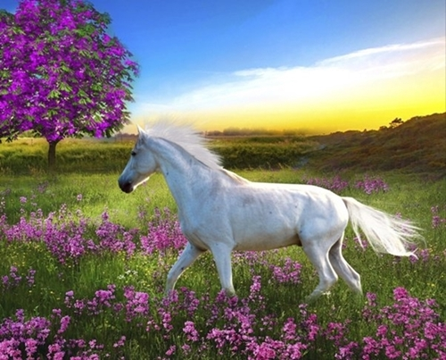 Purple Land White Horse Meadow at Sunrise Large Cotton Fabric Panel