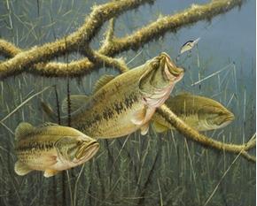 Hittin It Hard Largemouth Bass Fish Fishing Large Cotton Fabric Panel
