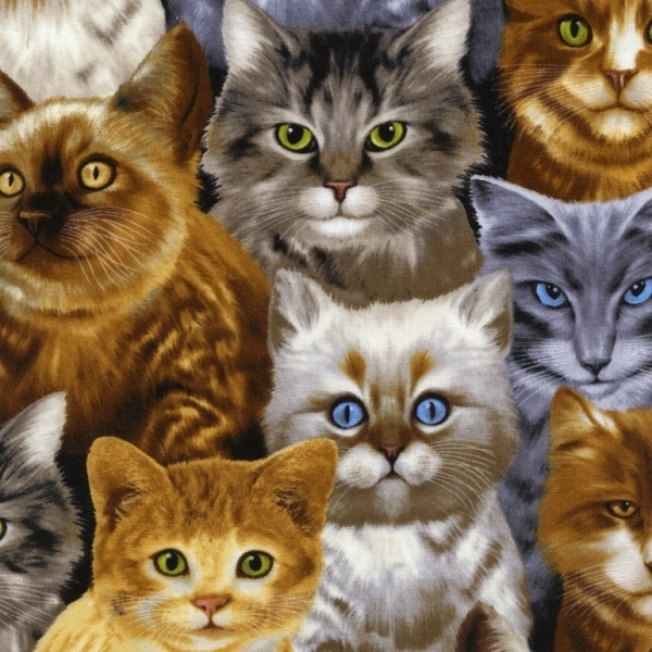 Picture for category Pet Fabrics