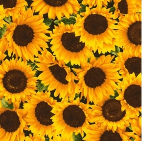 Sunflowers Allover Yellow Sunflower Flowers