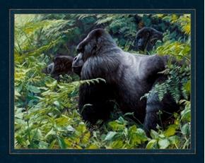 Gahonda Silverback Mountain Gorilla John Banovich Digital Fabric Panel