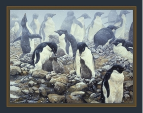 Spring Flurry Adelie Penguins John Seerey-Lester Digital Fabric Panel