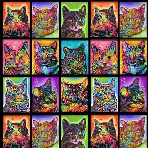 Crazy For Cats Rainbow Colored Cat Blocks 24x22 Cotton Fabric