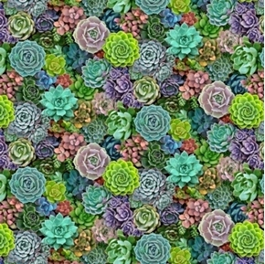 Succulent Charm Packed Succulents Sedum Smaller Plants Cotton Fabric