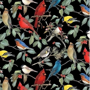 Birds and Hollies Songbirds Cardinal Chickadee Black Cotton Fabric