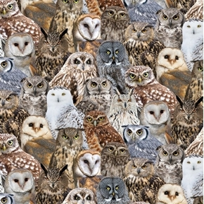 Owls Packed Rustic Owl Barn Boreal Horned Screech Bird Cotton Fabric