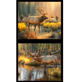 Morning Glory Wild Elk Greg Alexander 24x44 Cotton Pillow Panel Set
