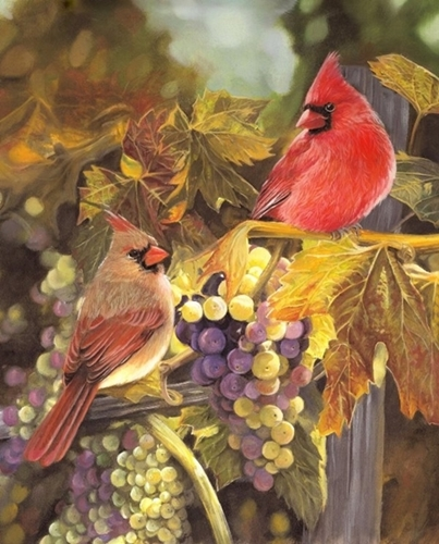 Harvest Time Cardinals Cardinal Birds Grapevine Digital Cotton Fabric