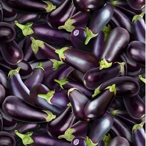 Food Festival Eggplants Purple Eggplant Vegetable Cotton Fabric