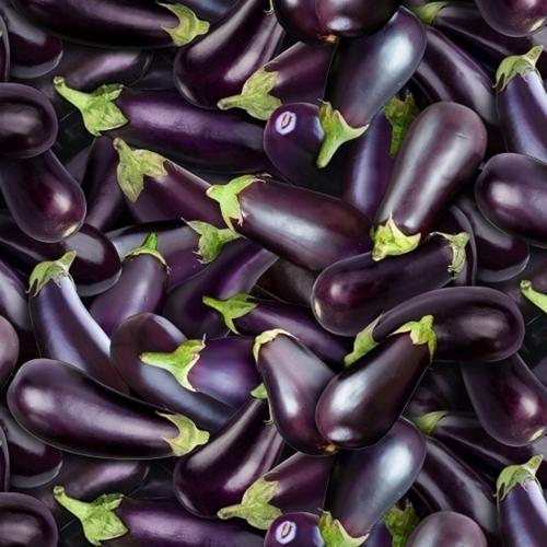 Food Festival Eggplants Purple Eggplant Vegetable Cotton Fabric