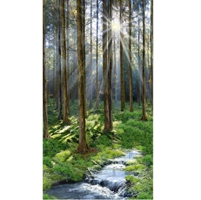 Sunny Forest Lush Woods Trees and Stream 24x44 Cotton Fabric Panel