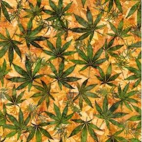 Happy Harvest Cannabis Leaves Flower Buds Orange Cotton Fabric