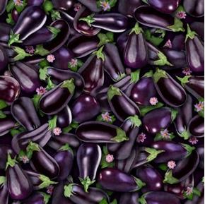 Fresh Eggplant Purple Eggplants Flowers Spongy Vegetable Cotton Fabric