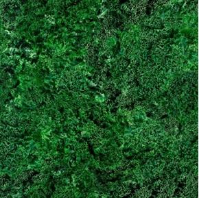 Fresh Kale Dark Leafy Green Healthy Vegetable Cotton Fabric