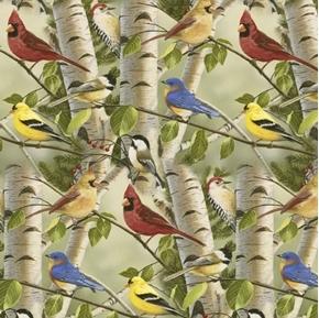 Summer Friends Birds Allover Songbirds Birch Trees Cotton Fabric